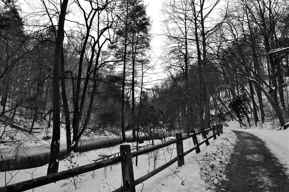 Valley Green_DSC0849 - Version 2